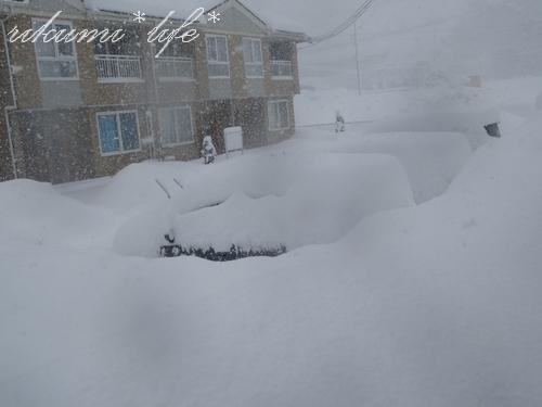 30日積雪2
