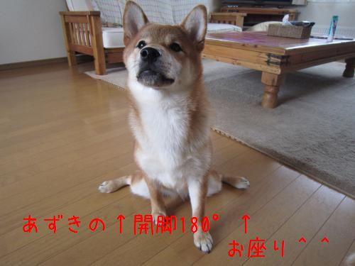 IMG_4262_convert_20110715222306.jpg