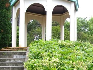 20110503 緑地庭園 (9)