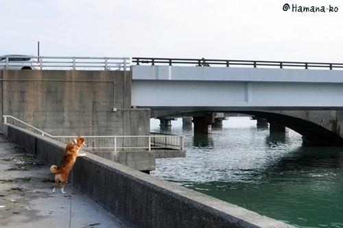 浜名湖~大阪 018