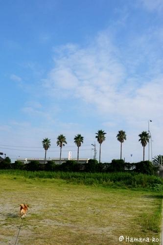 浜名湖~大阪 035