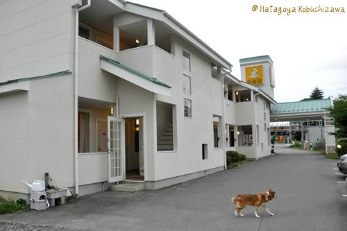 大阪~小淵沢~東京 111