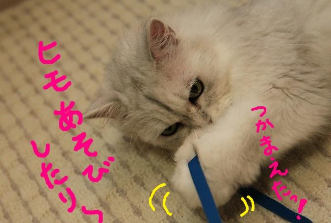 (2)_20110823234447.jpg