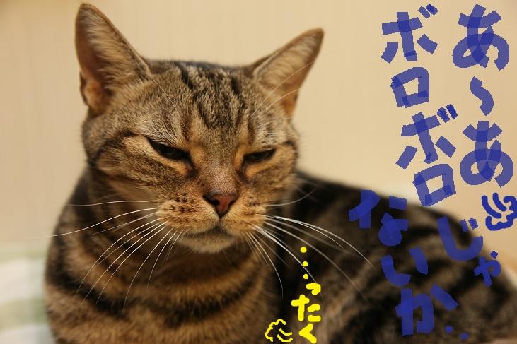 (2)_20111001221056.jpg