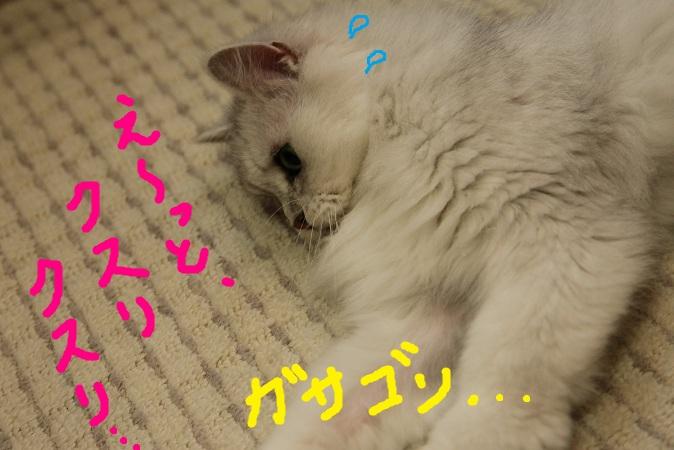 (4)_20110729223901.jpg