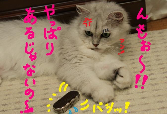 (8)_20110729224004.jpg