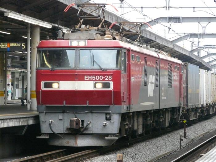 P1050593.jpg