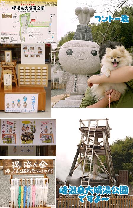 2009/10/22 伊豆旅行(その1)3