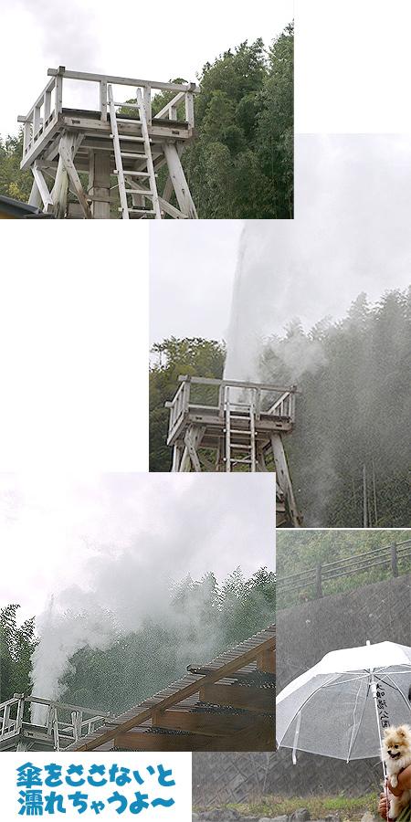 2009/10/22 伊豆旅行(その1)4