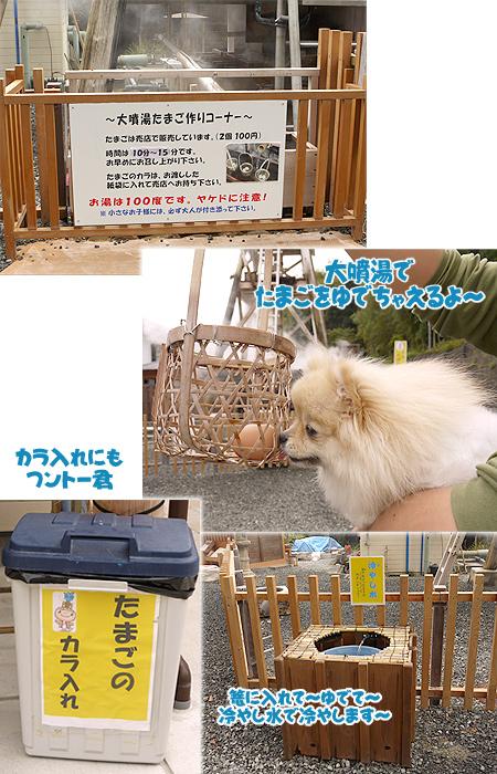 2009/10/22 伊豆旅行(その1)5