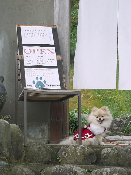 2009/10/22 伊豆旅行(その2)1