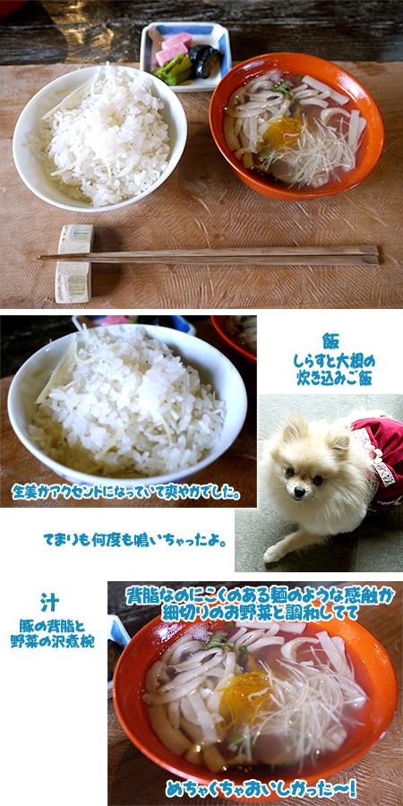 2009/10/22 伊豆旅行(その2)5