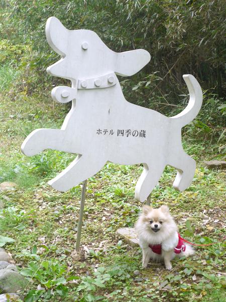 2009/10/22 伊豆旅行(その3)1