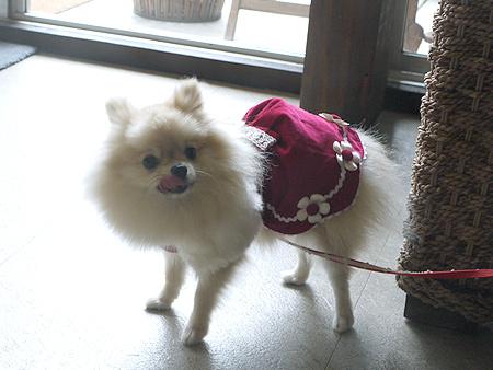 2009/10/22 伊豆旅行(その3)4