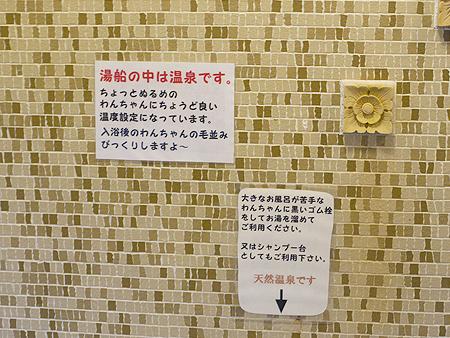 2009/10/22 伊豆旅行(その5)12