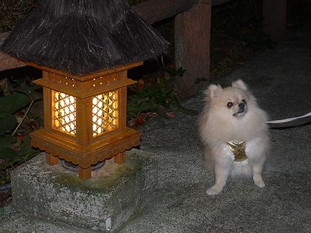2009/10/22 伊豆旅行(その8)14