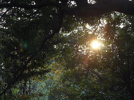 2009/10/23 伊豆旅行(その1)10