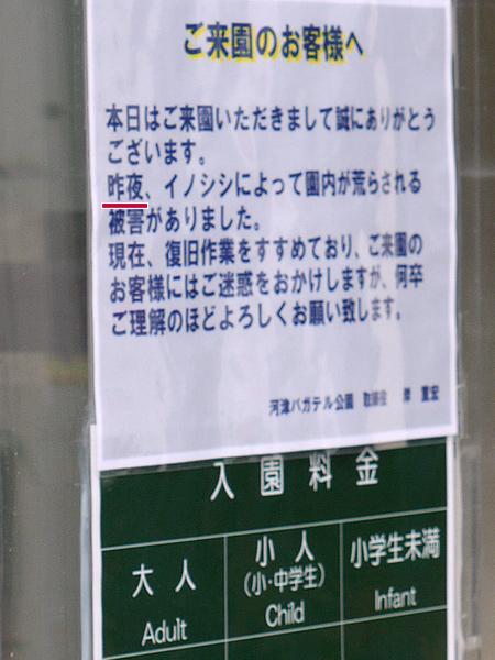 2009/10/23 伊豆旅行(その4)0