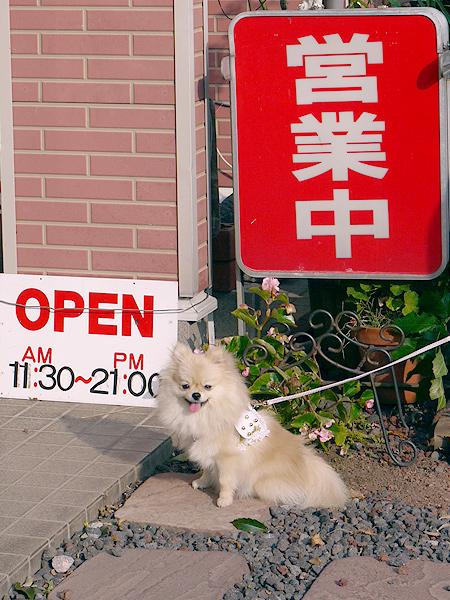 2009/10/23 伊豆旅行(その5)6