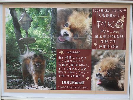 2009/10/23 伊豆旅行(その6)3