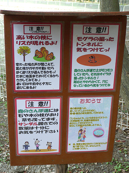 2009/10/23 伊豆旅行(その6)4