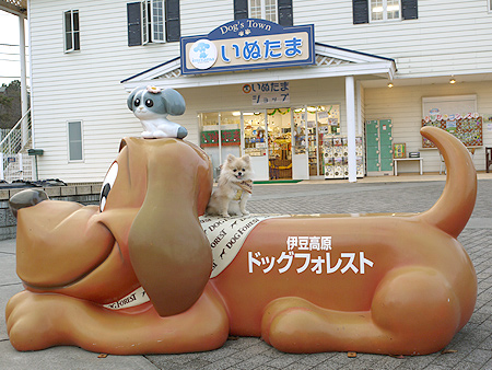 2009/10/23 伊豆旅行(その6)11