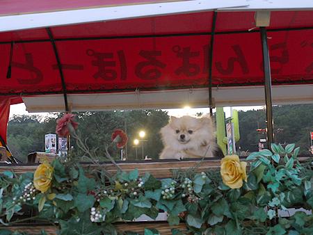 2009/10/23 伊豆旅行(その6)14
