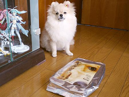 2009/10/28 オーガニックドッグフードウェナー2
