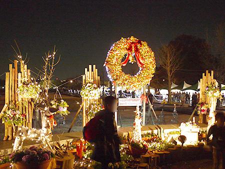 2009/12/6 昭和記念公園イルミ1