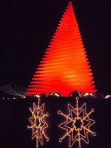 2009/12/6 昭和記念公園イルミ4
