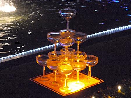 2009/12/6 昭和記念公園イルミ9