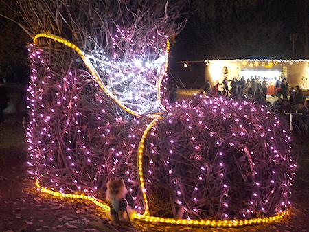 2009/12/6 昭和記念公園イルミ10