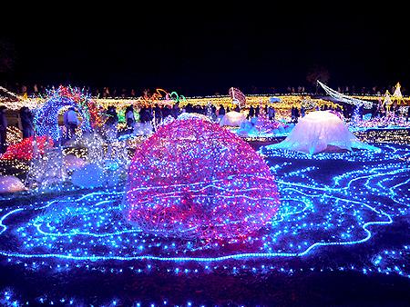 2009/12/6 昭和記念公園イルミ13