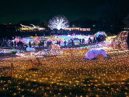 2009/12/6 昭和記念公園イルミ14