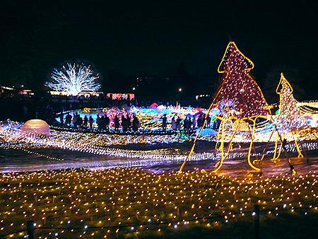 2009/12/6 昭和記念公園イルミ15