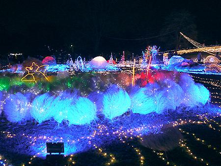 2009/12/6 昭和記念公園イルミ17
