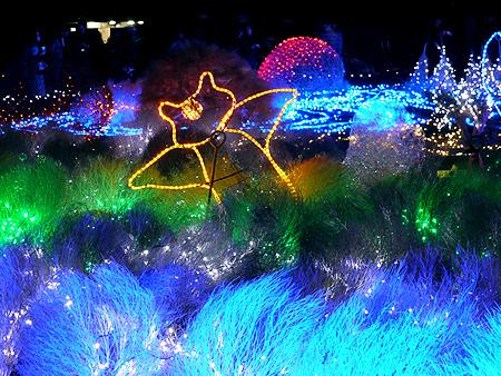2009/12/6 昭和記念公園イルミ18