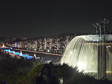 2009/12/6 昭和記念公園イルミ24