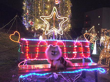2009/12/9 松田山きらきらフェスタ7