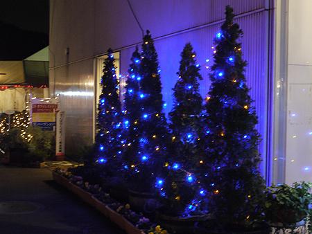 2009/12/9 松田山きらきらフェスタ17
