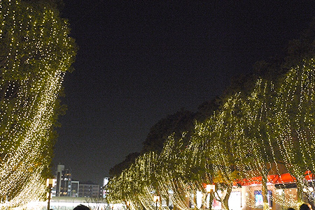 2009/12/26 多摩センターイルミ3