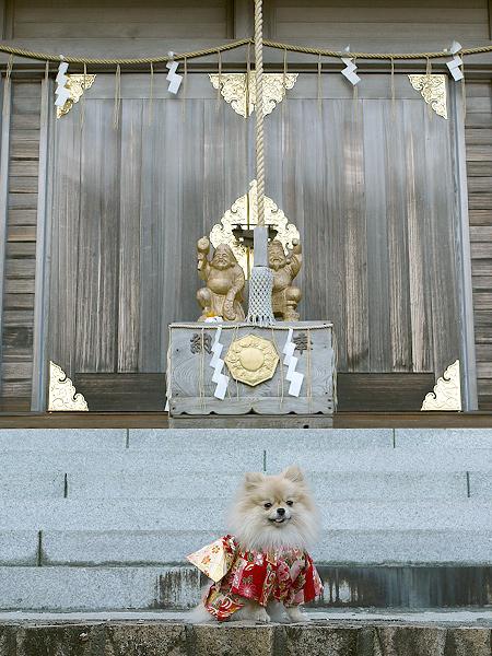 2010/1/2 神祇大社13