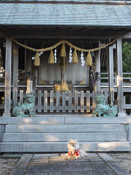 2010/1/2 神祇大社14