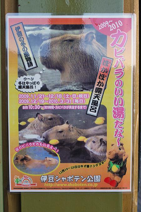 2010/1/2 伊豆旅の駅ぐらんぱるぽーと9