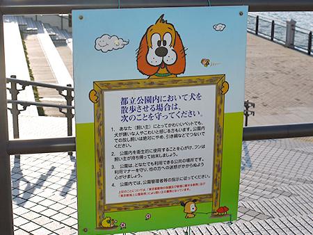 2010/1/16 豊洲公園6