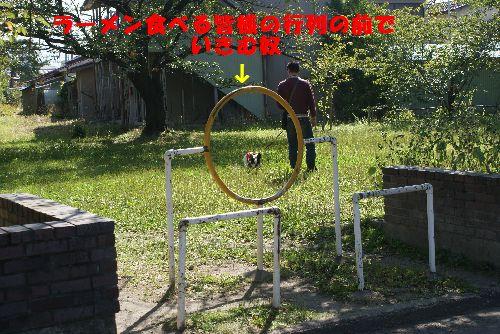 公園うんP