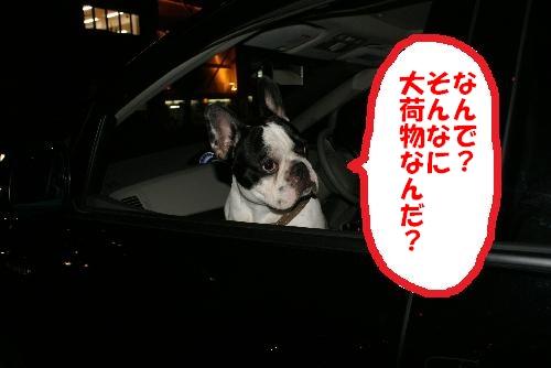 車に乗りました