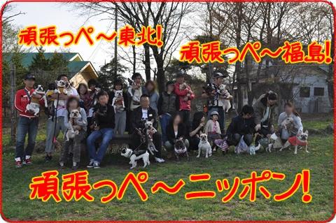 2011513-20.jpg