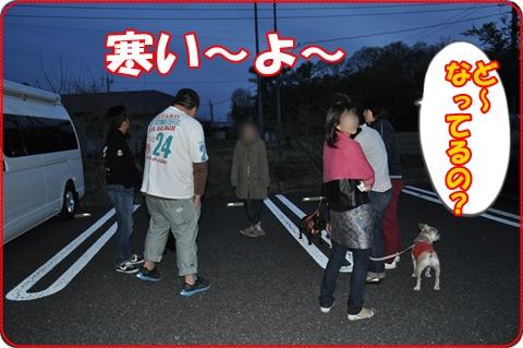 2011519-12.jpg