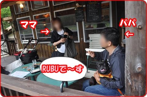 2011629-23.jpg